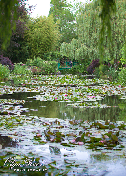 Een foto van de beroemde Japanse watertuin van de grote kunsternaar Claude Monet in Giverny. De waterlelies in alle kleuren zijn prachtig!