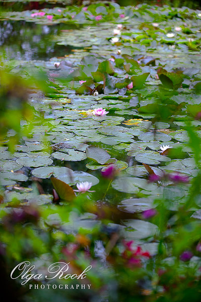 Photo of a pond with waterlilies in the garden of Claude Monet. The photo is made in an impressionistic style: there are vague spots of vivid colors reminding brush strokes.
