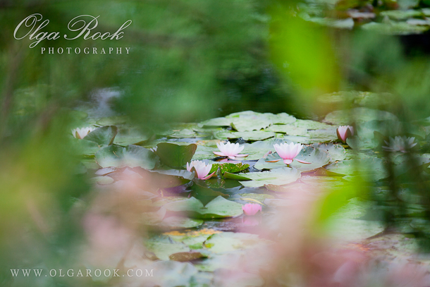 Impressionist Photography Inspiration And Tips