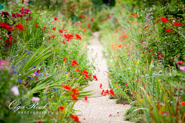 A passage between the flowers in the garden of Monet in Giverny: bright colors and a happy feel.