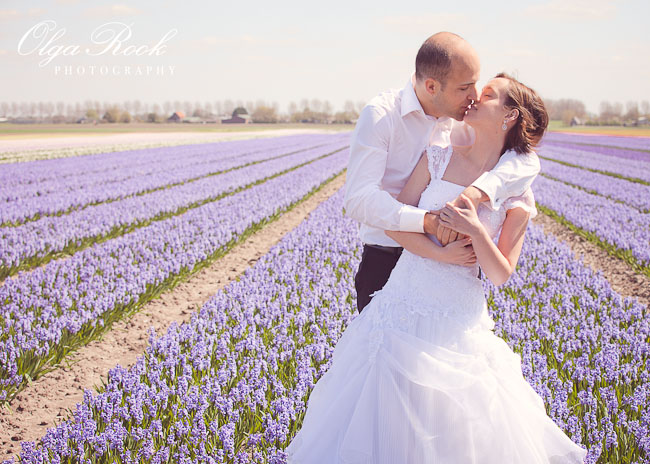 Wedding photography: the groom kisses the bride in a flower field.