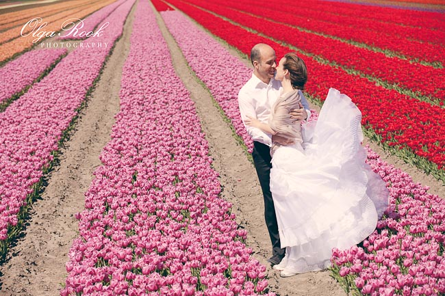 A romantic couple in a tulip field on a sunny spring day.