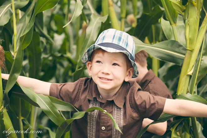 Klein roodharig jongentje met een hoedje speelt in een maïsveld
