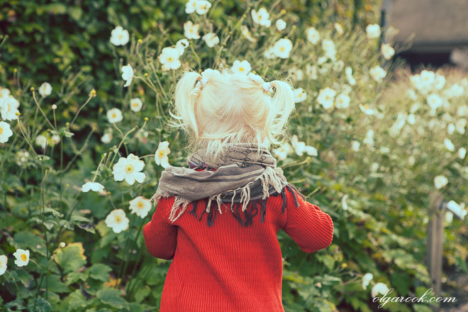 Portrait of a little girl plucking flowers in a garden