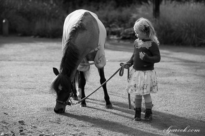 Nostalgische zwart-witte foto van een klein meisje met een pony in een park