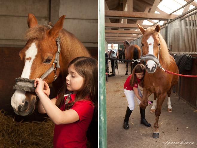 Foto's van het groomen van een pony door een klein meisje
