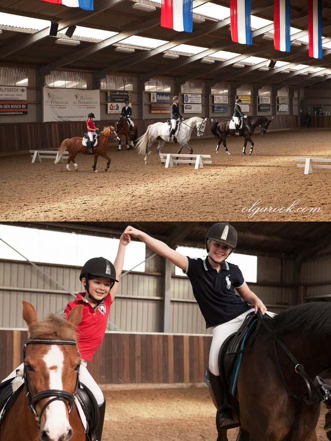 Foto's van paarden op de manege
