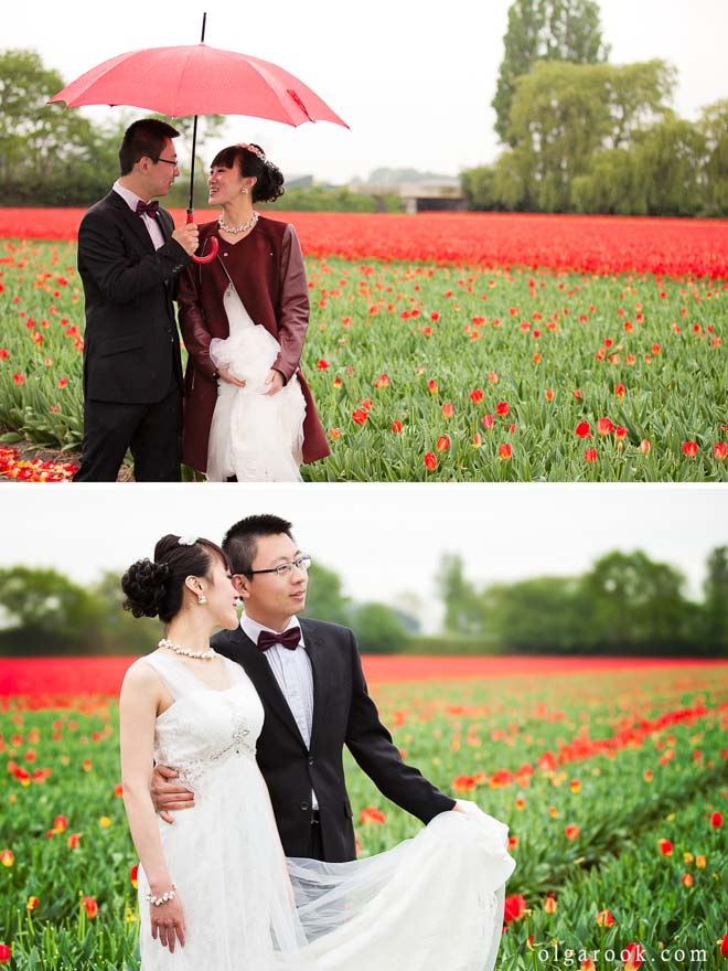 Loveshoot of a Chinese couple in the Dutch tulip fields
