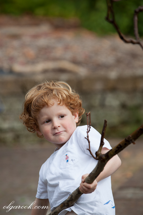 photo of a little boy lifting a large branch of a tree