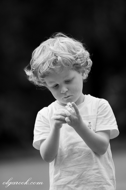 nostalgic portrait of a child with a daisy in his hands: he has a sweet and innocent impression