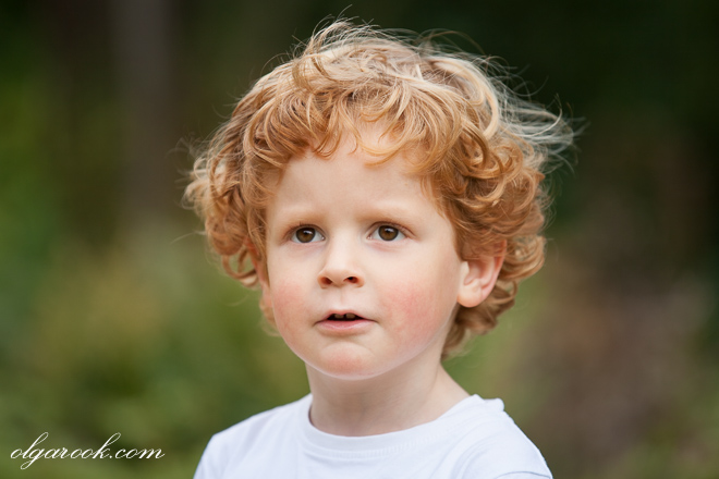 Dreamy color portrait of a little boy with red curls