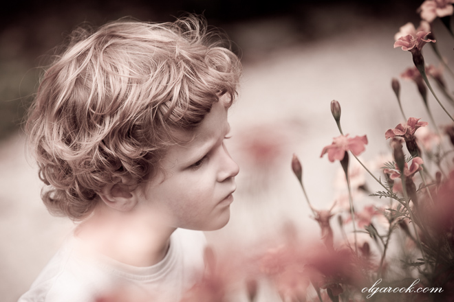 dreamy portrait of a little boy among the flowers in a park