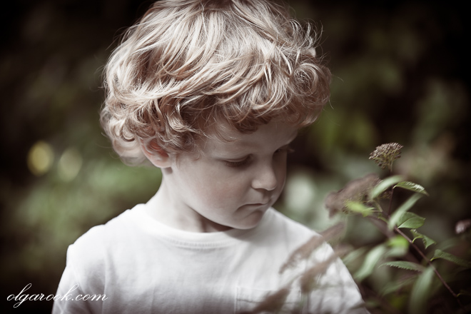 Artistic retro-feel portrait of a curly cherub-like little boy in a garden.