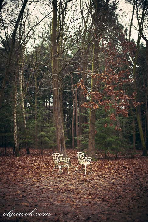 photo of two elegant garden chairs in a wood
