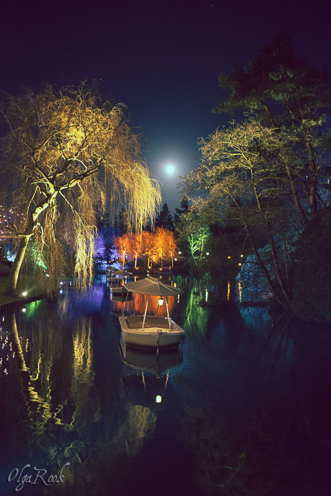 The lights on the boast in the Efteling by night