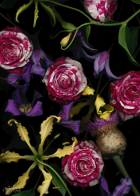 Florals-OlgaRook