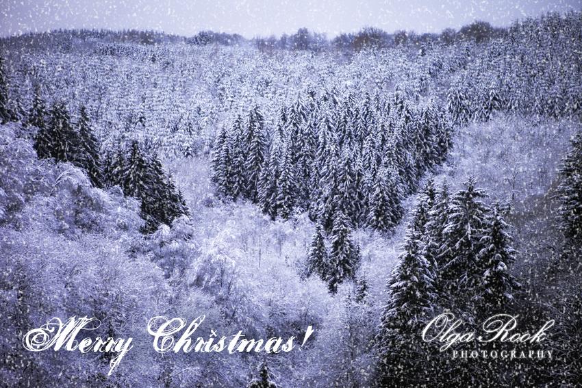 Sprookjesachtige winterlandschaft