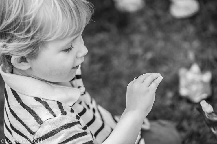 foto van een jongetje met een lieveheersbeestje op zijn hand