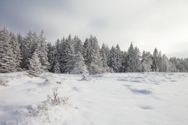 winter-tale-fotografie-5