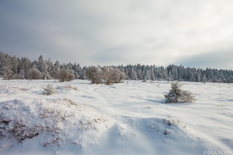winter-tale-fotografie-6