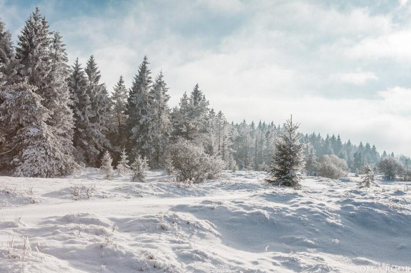 winter-tale-fotografie-7