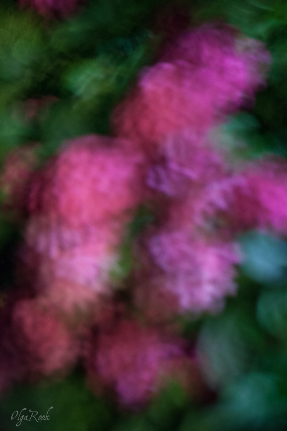 pastel-effect-olgarook-5