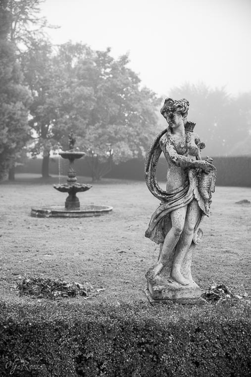 Mystical_mist_OlgaRookPhotography-11