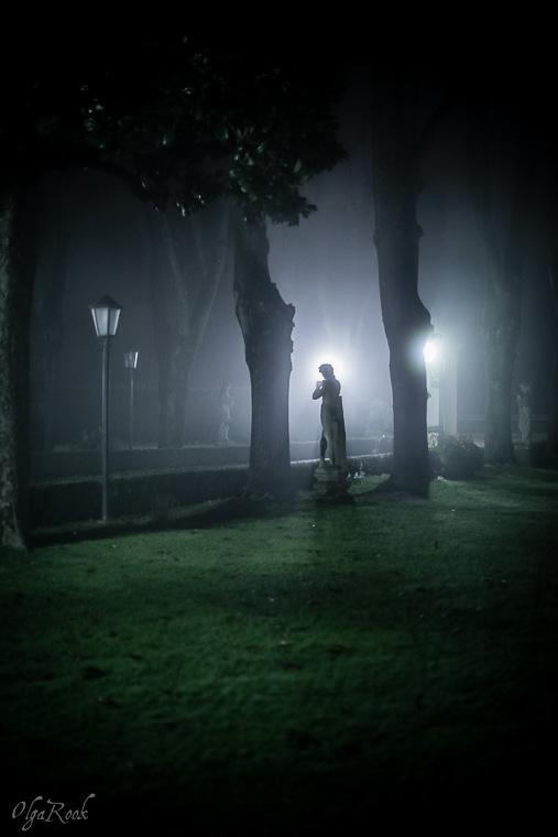 Mystical_mist_OlgaRookPhotography-5