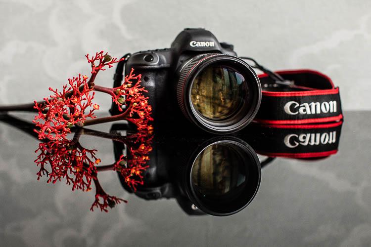canon-85-1.4-lens-2