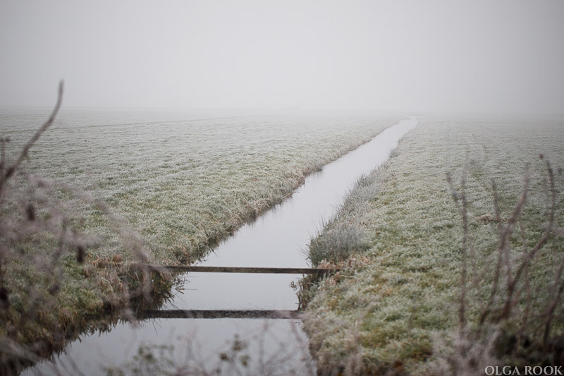 OlgaRook-winter-mist-holland-15