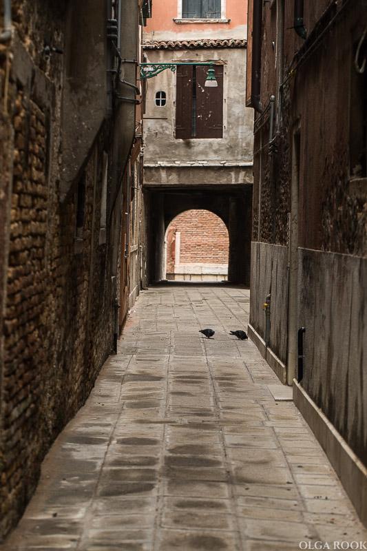 Venice-OlgaRook-11