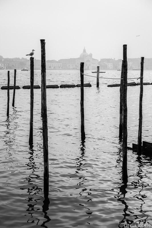 Venice-OlgaRook-41