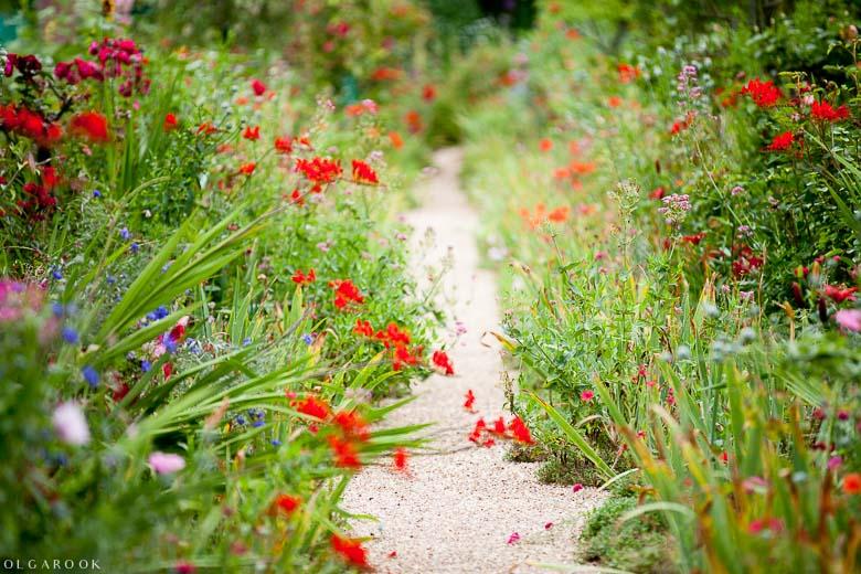 Foto van een pad de bloementuin van Claude Monet in Giverny: mooie bloemen, velle kleuren.