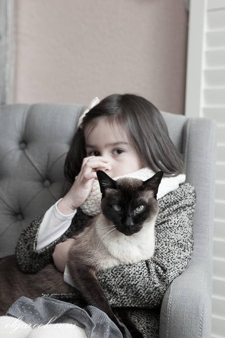 Artistic portrait of a little girl with a blue-eyed cat.
