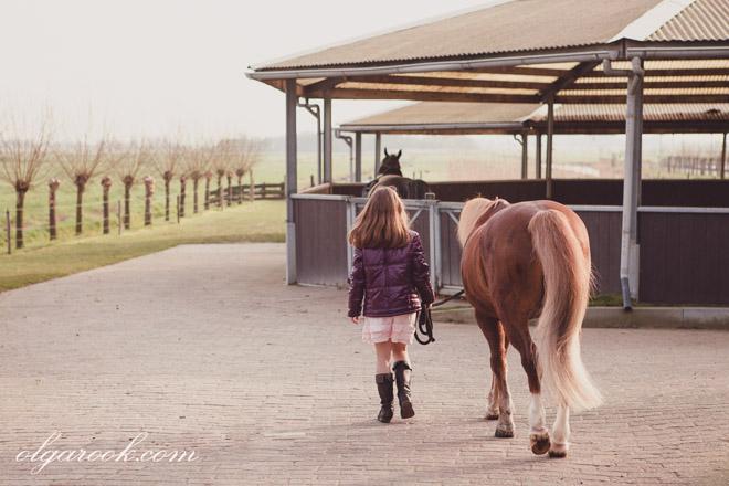 Dromerige sfeervolle foto van een meisje die met een pony naast de stallen naar een veld loopt.