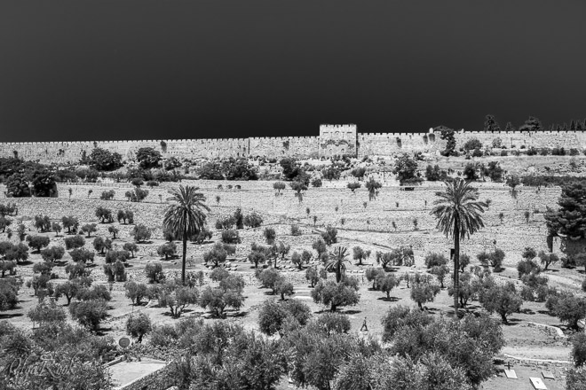 Jerusalem fotografie: Kidron