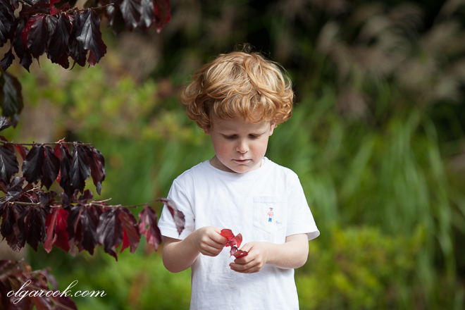 photo of a little boy in an autumn park