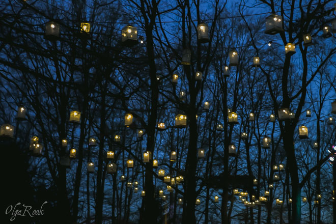 lamps hanging on the trees in the dark