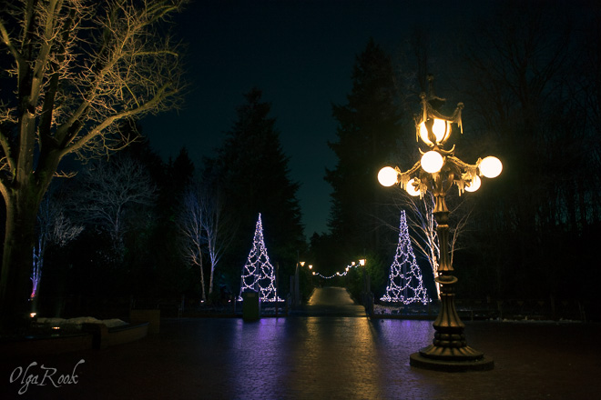 Picturesque lanterns in the winter Efteling park by night