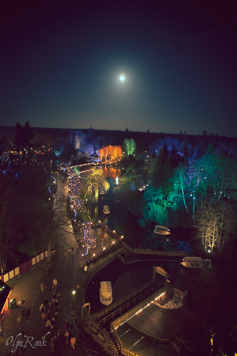 a panorama from the Pagoda by night at full moon
