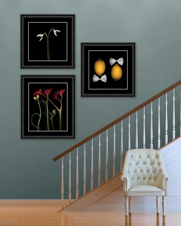 Voorbeeld van kunstwerken met een zwart passé-partout met witte kern.
