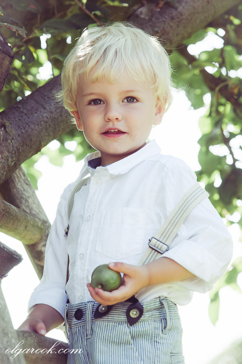 Classic portrait of a blond little boy with an apple in his hand