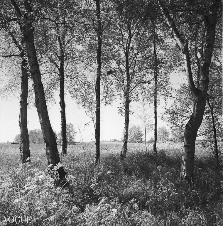 OlgaRookPhotography-Vogue_analoge-natuurfotografie-3