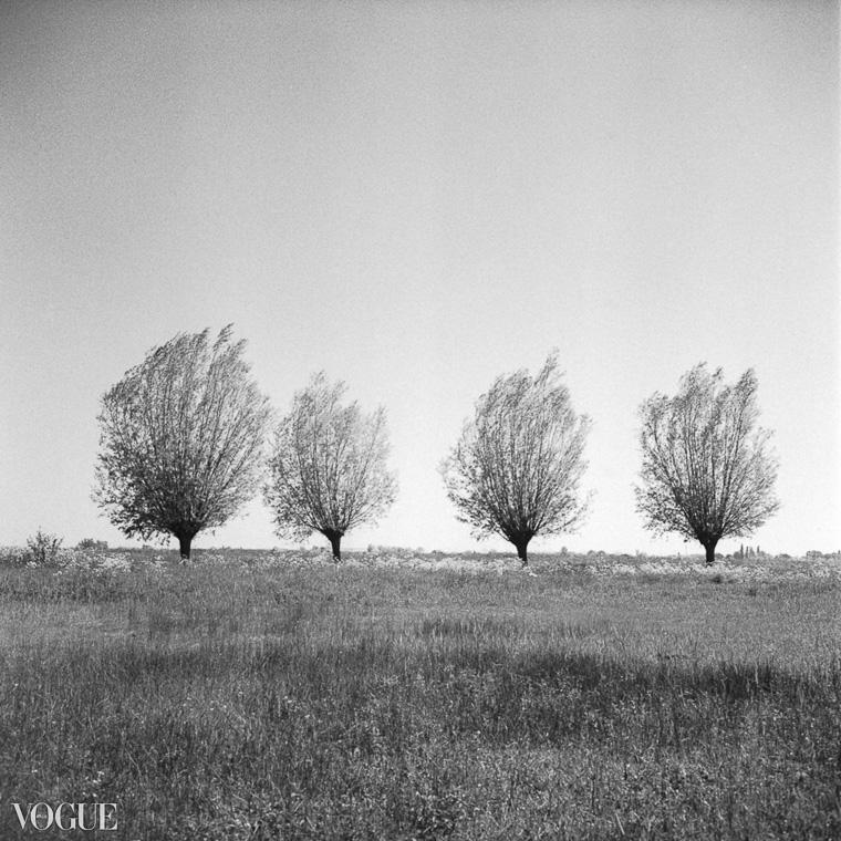 OlgaRookPhotography-Vogue_analoge-natuurfotografie-8