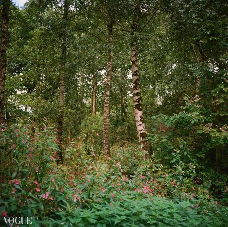 OlgaRookPhotography-Vogue_analoge-natuurfotografie