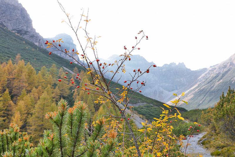 reisfotografie-OlgaRook_Tirol-4