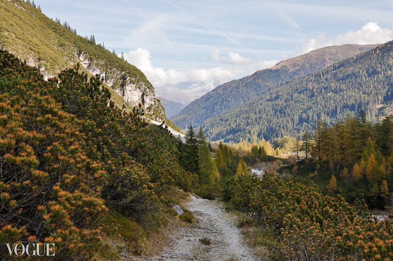 The colors of the fall in Tyrol