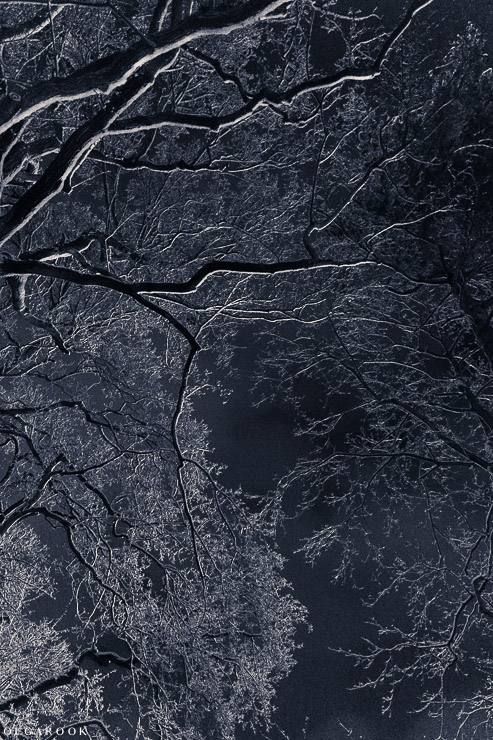 wintertale-OlgaRook-12