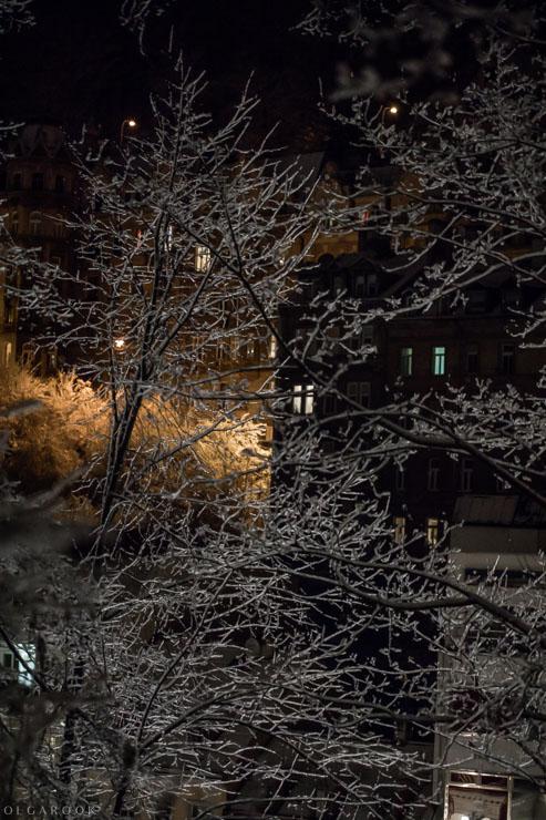 wintertale-OlgaRook-29