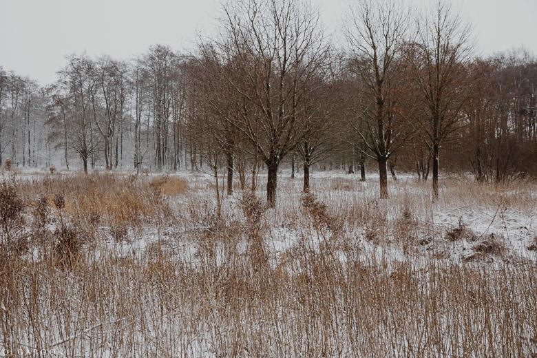 Landschapfotografie_OlgaRook-11
